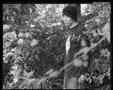 b&w photo young man in garden
