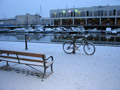 Snow on the Harbourside